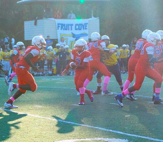 Quarterback Austin Reed, Austin Reed football, sebastian middle school eagles football team, youth quarterback, st. augustine quarterback